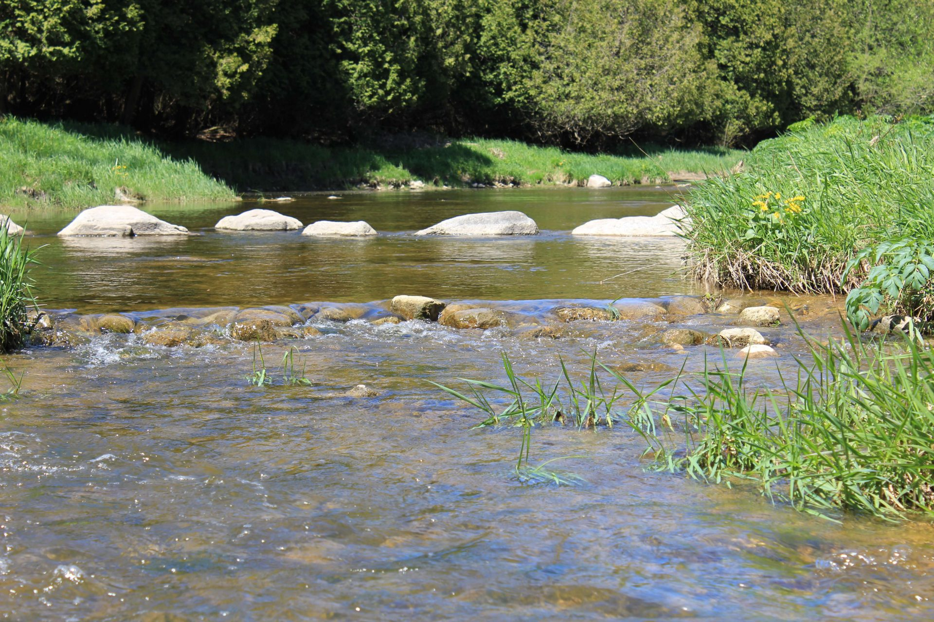 lazy river with rocks